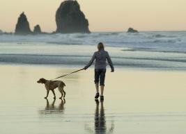 sprehod psa